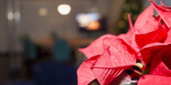 Weihnachtsfeier2019_0021